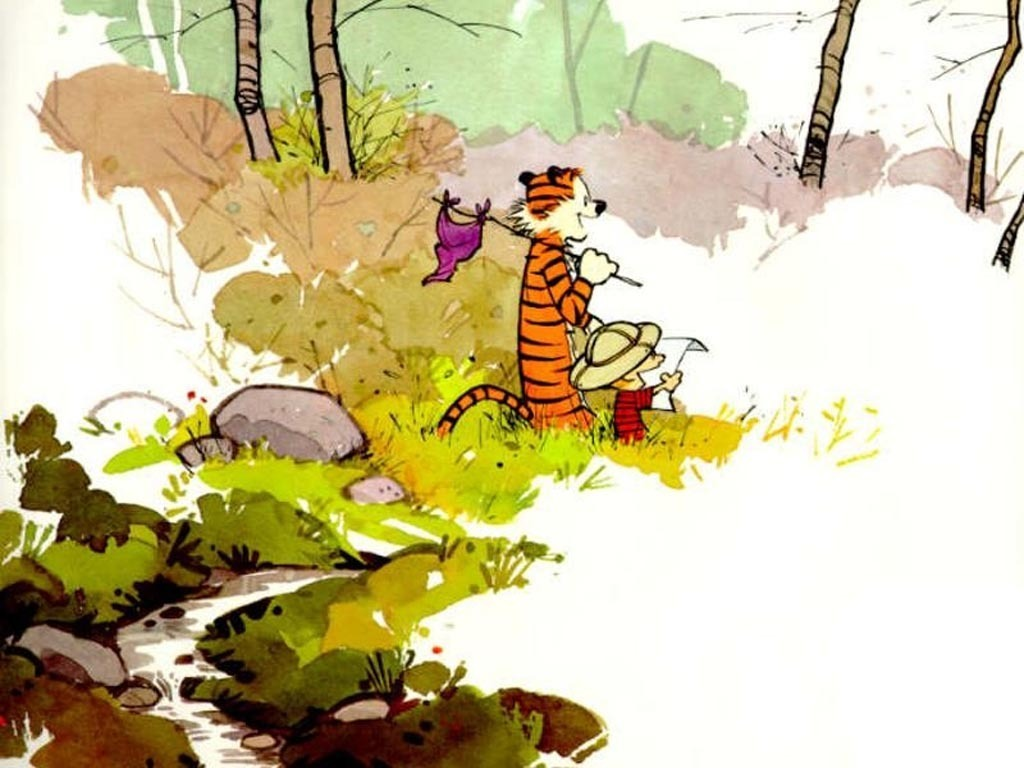 1488116-calvin_and_hobbes_calvin_and_hobbes_1395571_1024_768